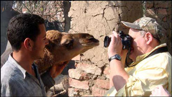 Curious young camel investigates Don Birkner, one of our photographers